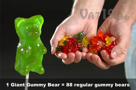 giant gummy bear versus regular gummy bears1 Giant Gummy Bears the best invention ever?