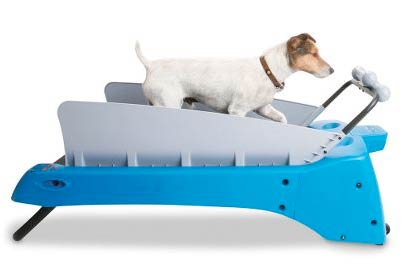 picture 1 Let your dog keep its new years resolutions with the doggy treadmill