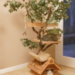 Feline Tree House 150x150 Dont be a cry baby, use some macho tissues and quit whining