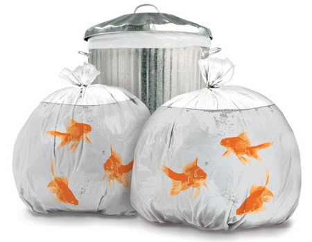 goldfish garbage bags One persons trash is another mans Goldfish Garbage Bag
