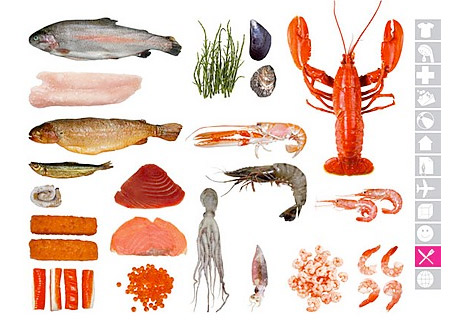 icoon seafood ICOON Personal Picture Global Dictionary uses icons for everything