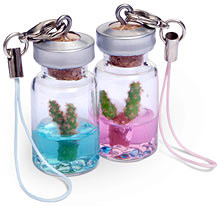 mini pet cactus Mini Pet Cactus is a pet in your pocket