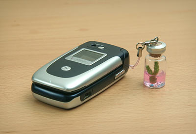 84b2 mini pet cactus onphone Mini Pet Cactus is a pet in your pocket