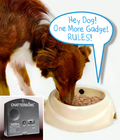 chatter bowl The Greatest List of Must Have Pet Gadgets