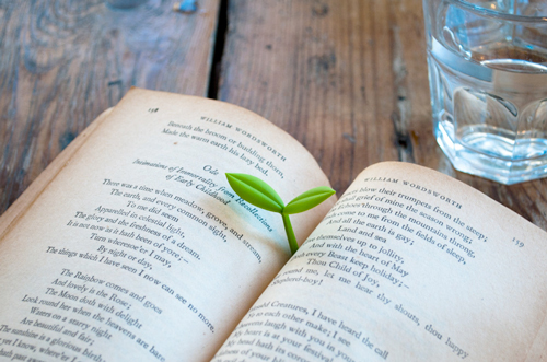 sprout bookmark Some of the best gadgets are teeny, like the little sprout bookmark