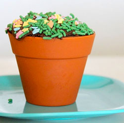 cupcake flower pot Plant some ingredients and watch them grow, its the Blooming Cupcakes Baking Kit