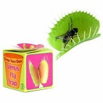 grow your own venus fly trap kit 150x150 How to get rid of 20,000 flies with the non toxic fly trap